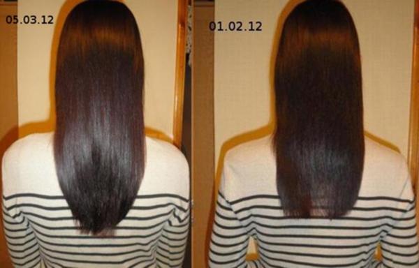 Рост и блеск волос полсе месяца использования касторки