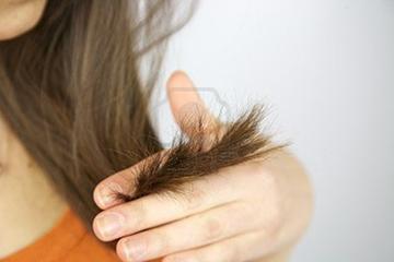 Секутся концы волос